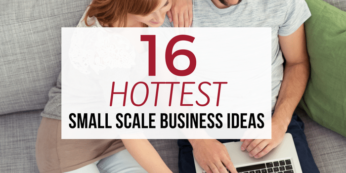 16 Hottest Small Scale Business Ideas of 2017